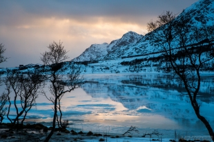 Lofoten, Norway. All Rights Reserved.